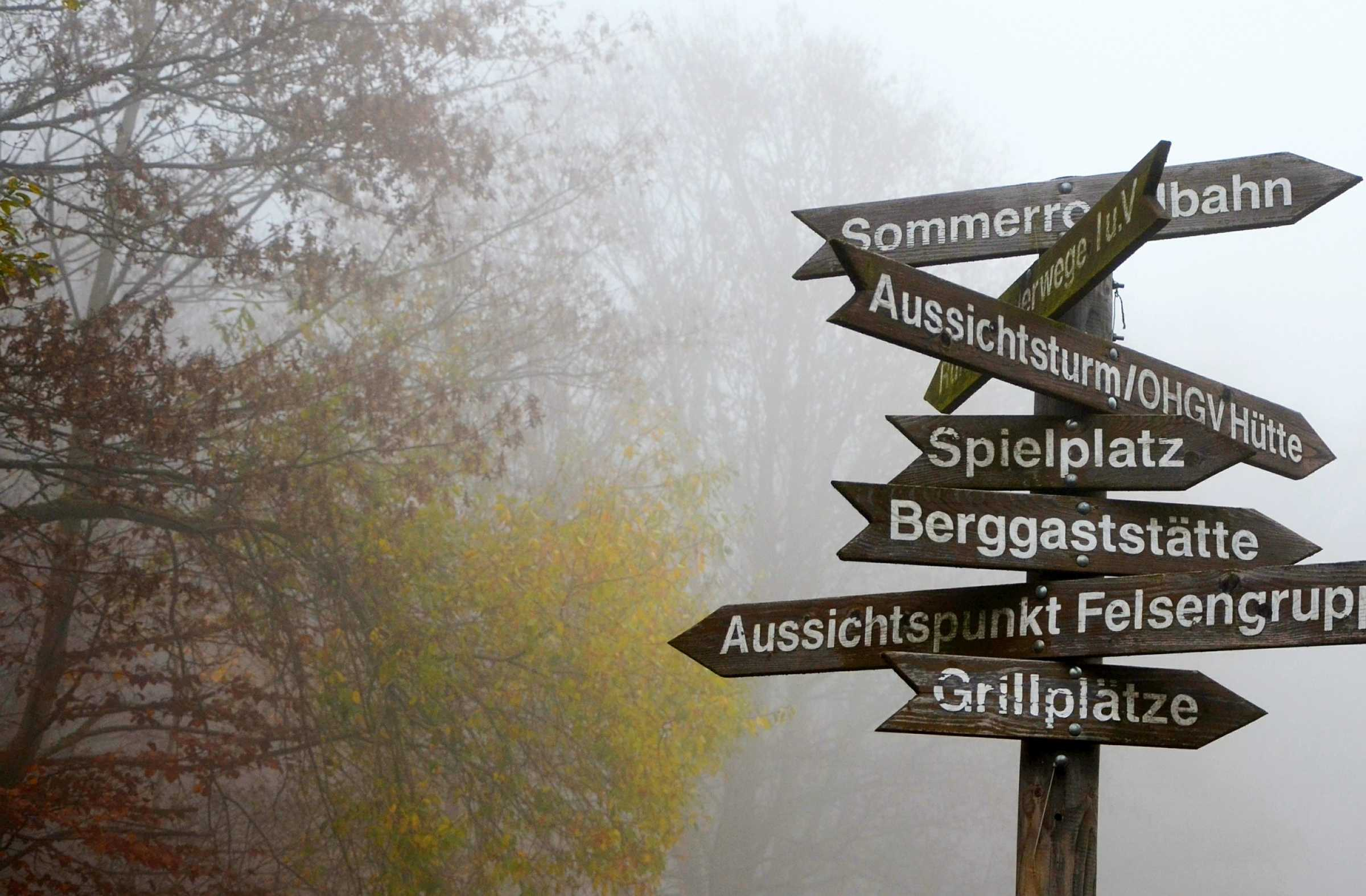 Signposts in the mist